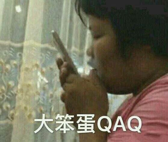 大笨蛋QAQ