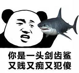 你是一头剑齿鲨又贱又痴又犯傻