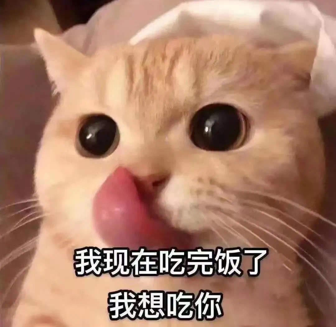 我现在吃完饭了 我想吃你