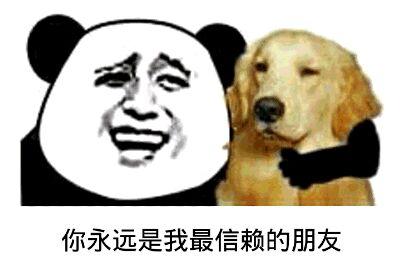 抱着狗:你永远是我最信赖的朋友