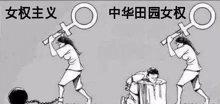 女权主义、中华田园女权