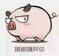 猪都嫌弃你