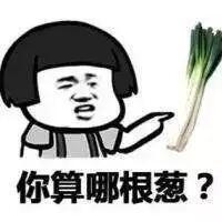 你算哪根葱?