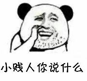 小贱人你说什么(熊猫大叔)