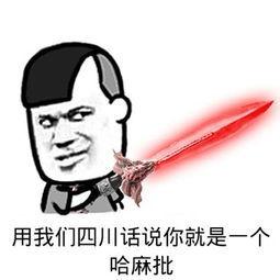 用我们四川话说你就是一个哈麻批