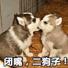 闭嘴。二狗!