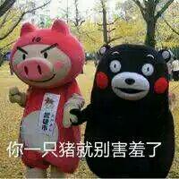 你一只猪就别害羞了