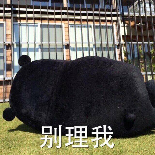 别理我(熊本熊)