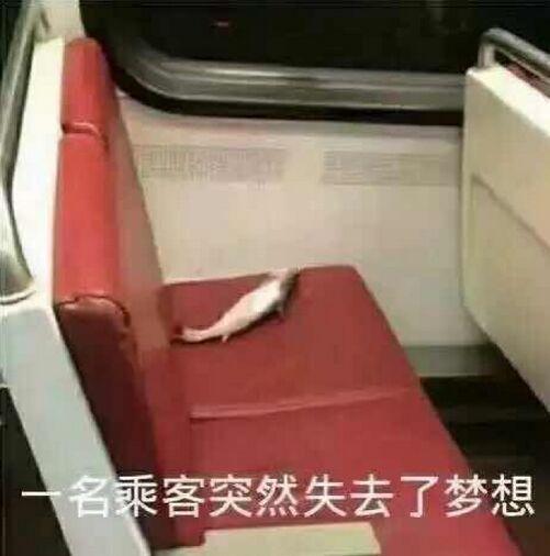 一名乘客突然失去了梦想(咸鱼)