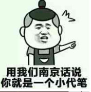 用我们南京话说你就是一个小代笔
