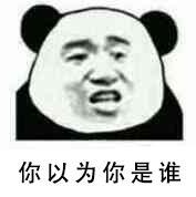 你以为你是谁啊(熊猫人)