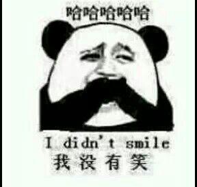 哈哈哈哈,我没有笑(i did't smile)