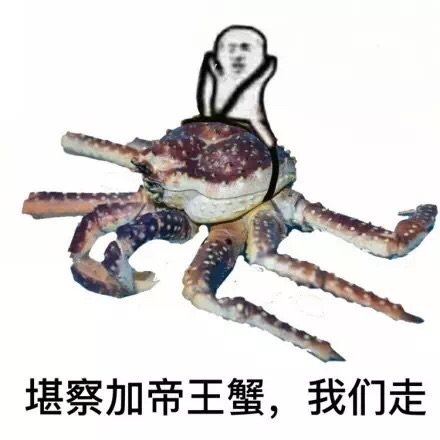 堪察加帝王蟹,我们走!