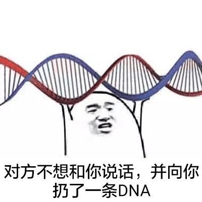 对方不想和你说话,并向你扔了一条DNA