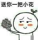 送你一把小花