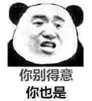 你别得意,你也是(熊猫)