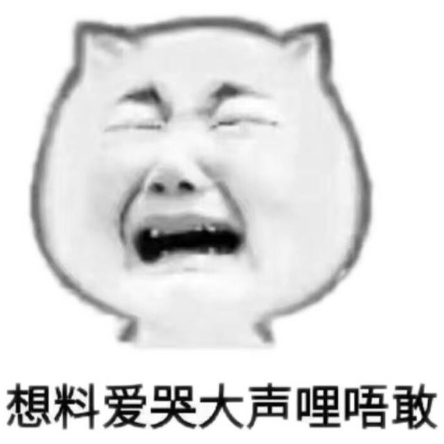 想料爱哭大声哩唔敢(猫脸)
