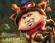 我叫timo 你特么来打我啊