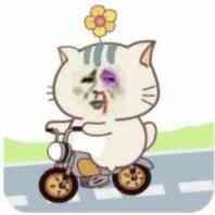 金馆长骑车车(可爱萌萌哒)