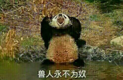 兽人永不为奴熊猫表情包