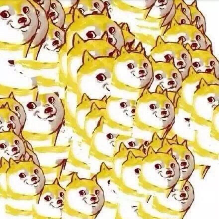 一堆的神烦狗(doge)