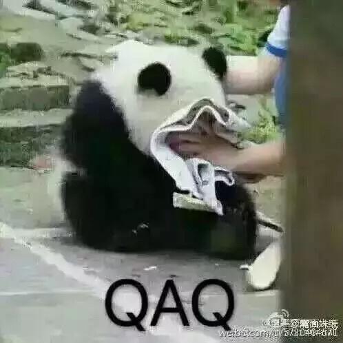 不要哭、不要哭(熊猫)