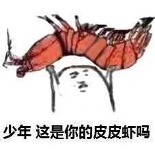 少年,这是你的皮皮虾吗?