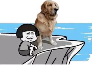蘑菇头和狗狗仰望大海