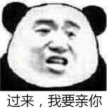 过来,我要亲你(熊猫)