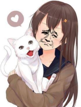金馆长小美女抱小猫 - 表情包