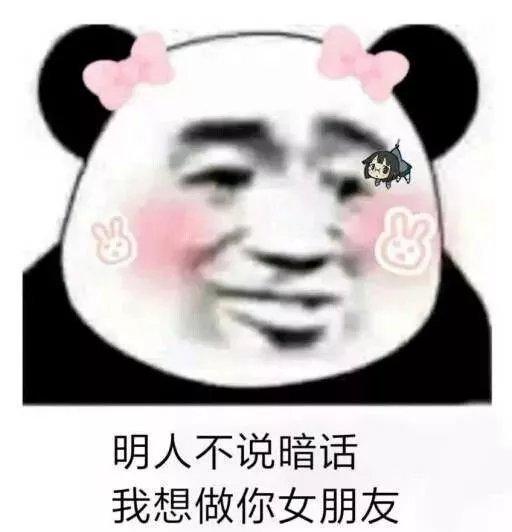 明人不说暗话 我想做你女朋友 - 熊猫头撩汉表情包第二弹