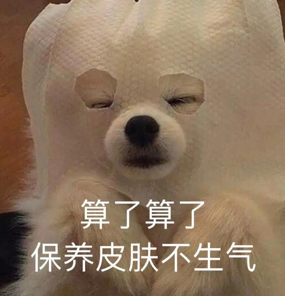算了算了,保养皮肤不生气  狗狗敷面膜表情包