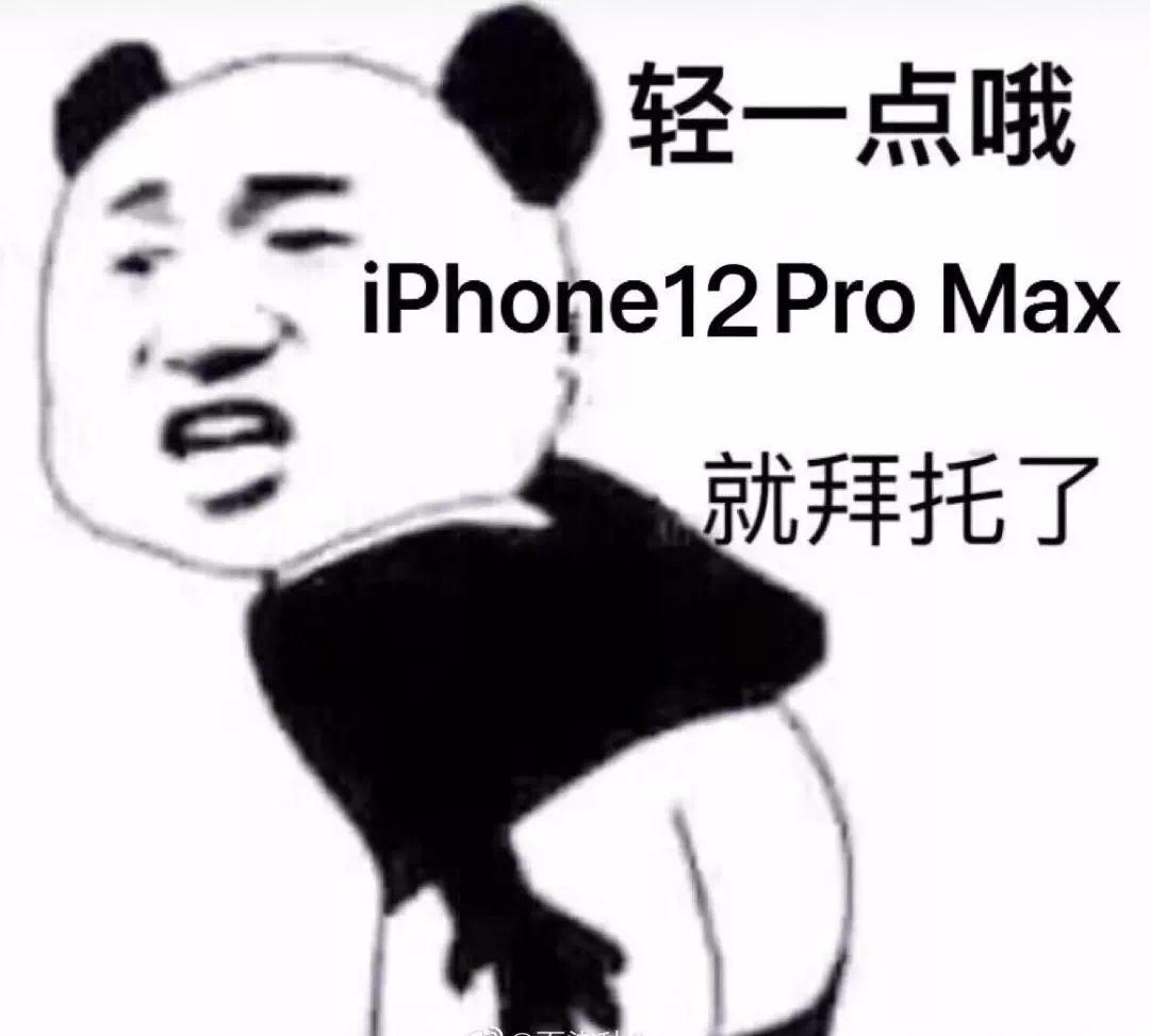 轻一点哦iPhone12 Pro Max 就拜托了 - 近期热门斗图表情包精选-2020-10-18